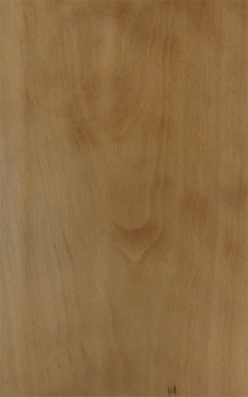 beech engineered floor baro100
